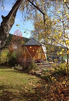 Iko im Herbstgarten-224px